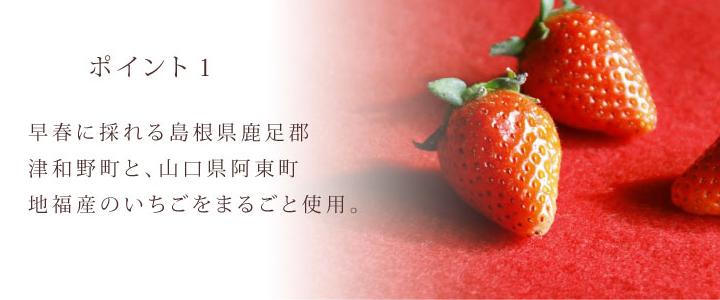 いちご ポイント1